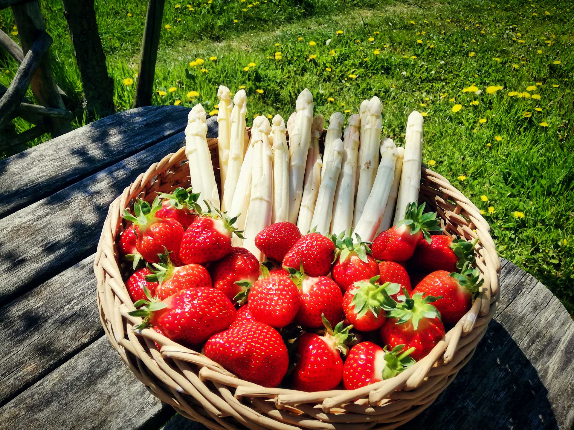 erdbeeren-spargel2021Neu-web